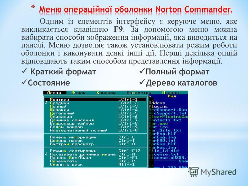 Одним із елементів інтерфейсу є керуюче меню, яке викликається клавішею F9. За допомогою меню можна вибирати способи зображення інформації, яка виводиться на панелі. Меню дозволяє також установлювати режим роботи оболонки і виконувати деякі інші дії.