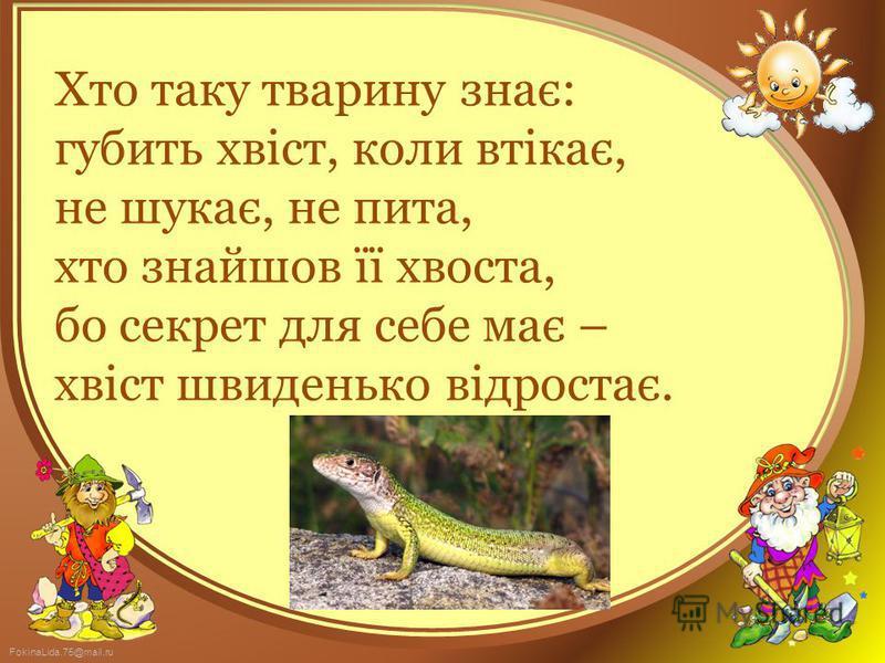 FokinaLida.75@mail.ru Хто таку тварину знає: губить хвіст, коли втікає, не шукає, не пита, хто знайшов її хвоста, бо секрет для себе має – хвіст швиденько відростає.
