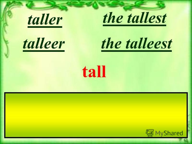 tall the talleesttalleer taller the tallest