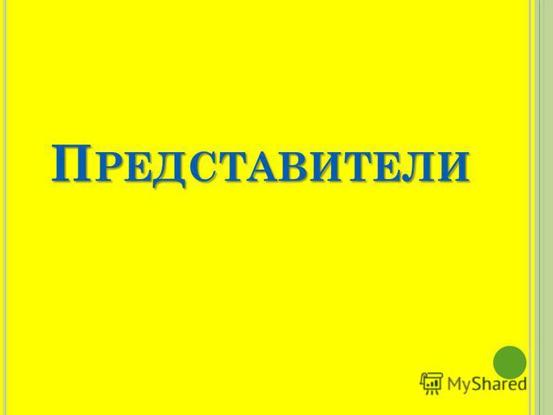 П РЕДСТАВИТЕЛИ