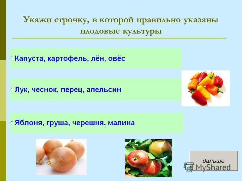 Укажи строчку, в которой правильно указаны плодовые культуры