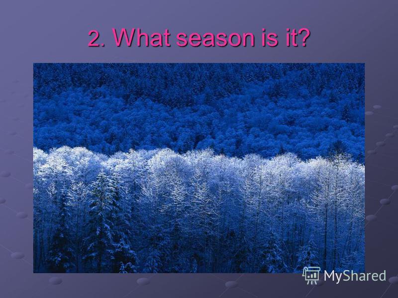 2. What season is it?