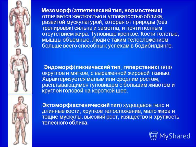 Мезоморф (атлетический тип, нормостеник) отличается жёсткостью и угловатостью облика, развитой мускулатурой, которая от природы (без тренировок) сильна и заметна, и почти полным отсутствием жира. Туловище крепкое. Кости толстые, мышцы объемные. Люди