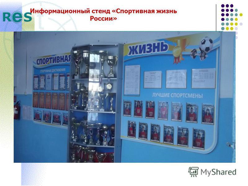 Информационный стенд «Спортивная жизнь России»