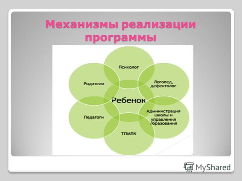Механизмы реализации программы
