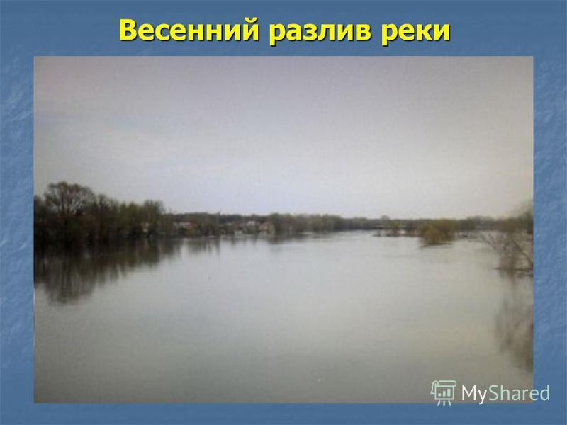 Весенний разлив реки