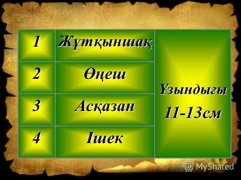 Ішек4 Асқазан3 Өңеш2 Ұзындығы11-13смЖұтқыншақ1