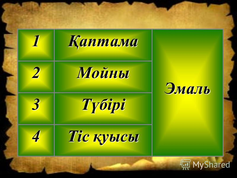 Тіс қуысы 4 Түбірі3 Мойны2 ЭмальҚаптама1
