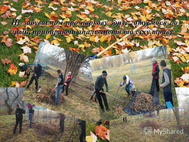 Не забуваємо і про паркову зону: готуємося до зими, прибираючи опале листя та суху траву