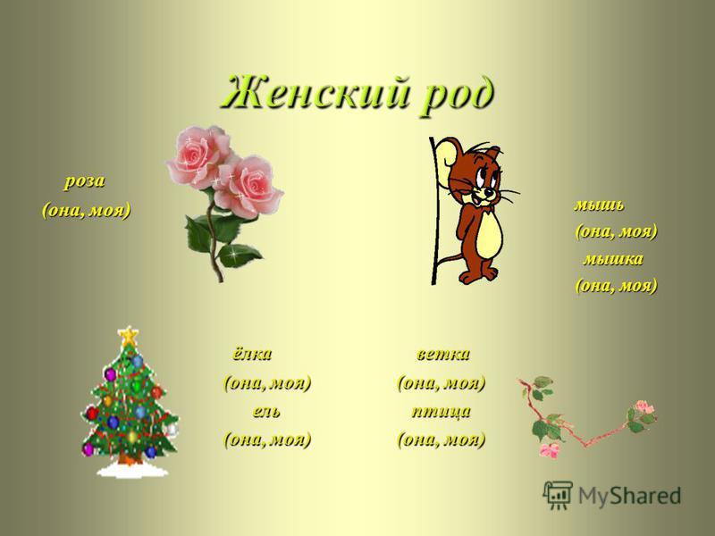 роза ( она, моя ) мышь ( она, моя ) ( она, моя ) мышка мышка ( она, моя ) ( она, моя ) ёлка ( она, моя ) ( она, моя ) ель ель ( она, моя ) ( она, моя ) ветка ( она, моя ) ( она, моя ) птица птица ( она, моя ) ( она, моя )
