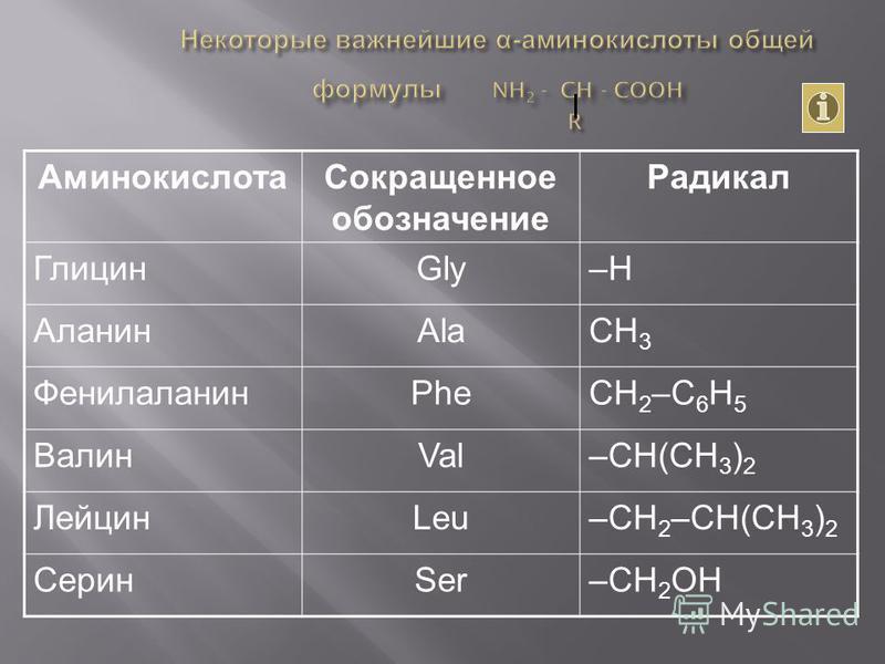 Аминокислота Сокращенное обозначение Радикал ГлицинGly–Н АланинAlaCH 3 ФенилаланинPheCH 2 –C 6 H 5 ВалинVal–СH(CH 3 ) 2 ЛейцинLeu–CH 2 –CH(CH 3 ) 2 СеринSer–CH 2 OH