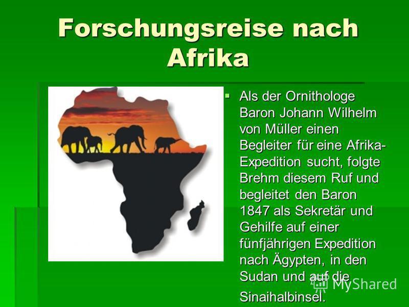 Forschungsreise nach Afrika Als der Ornithologe Baron Johann Wilhelm von Müller einen Begleiter für eine Afrika- Expedition sucht, folgte Brehm diesem Ruf und begleitet den Baron 1847 als Sekretär und Gehilfe auf einer fünfjährigen Expedition nach Äg