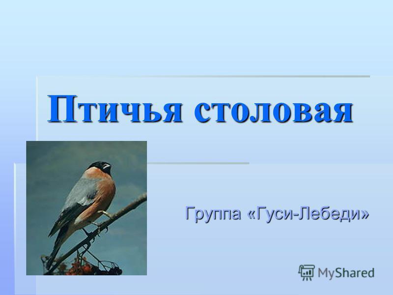 Птичья столовая Группа «Гуси-Лебеди»