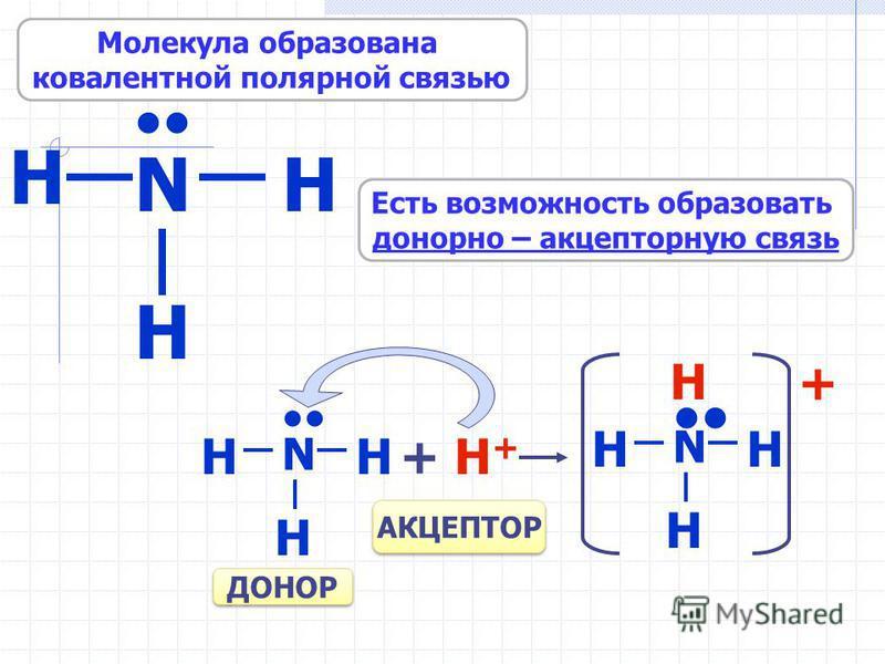 H N H H Есть возможность образовать донорно – акцепторную связь Молекула образована ковалентной полярной связью N HH H + H++ H+ N HH H H + АКЦЕПТОР ДОНОР