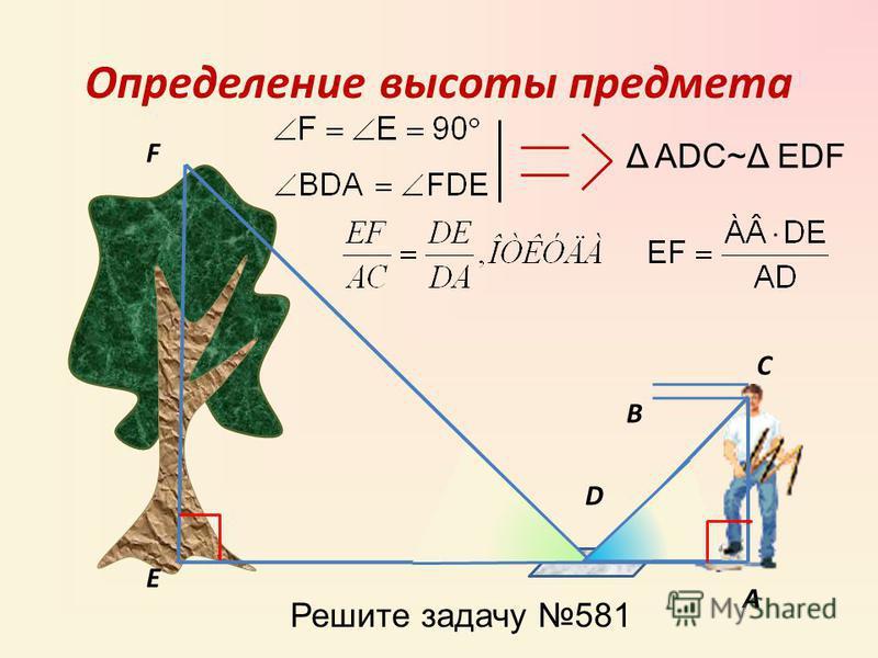 Определение высоты предмета А В С D F E Δ ADC~Δ EDF Решите задачу 581