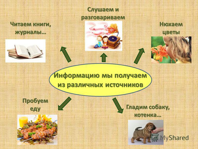 Информацию мы получаем из различных источников Читаем книги, журналы… Слушаем и разговариваем Нюхаем цветы Гладим собаку, котенка… Пробуем еду