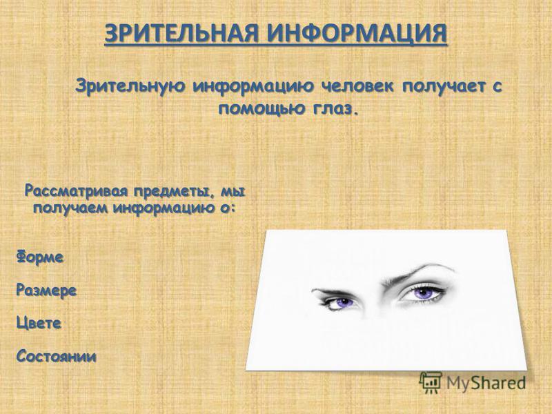 Рассматривая предметы, мы получаем информацию о: Форме РазмереЦвете Состоянии ЗРИТЕЛЬНАЯ ИНФОРМАЦИЯ Зрительную информацию человек получает с помощью глаз.