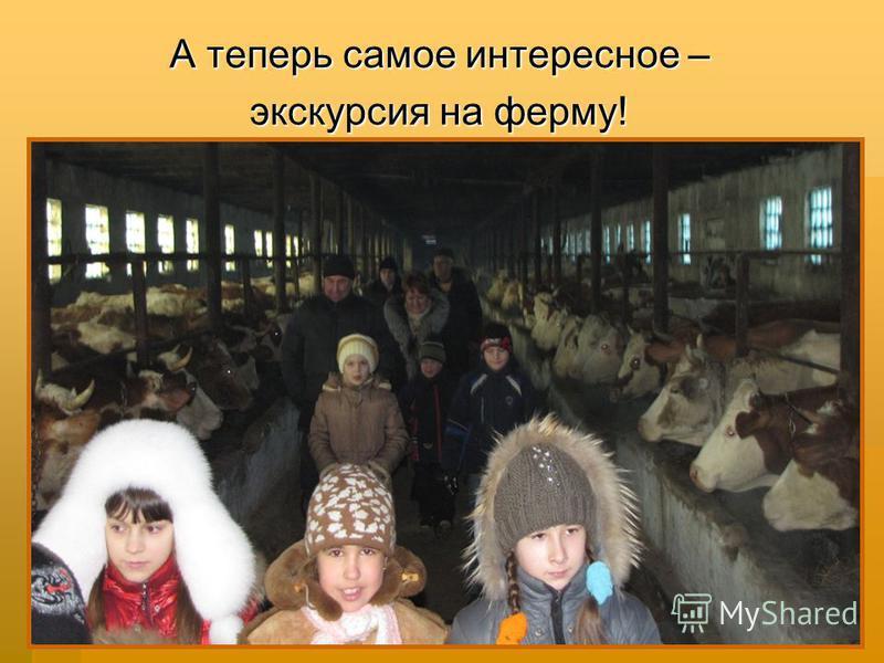 А теперь самое интересное – экскурсия на ферму!