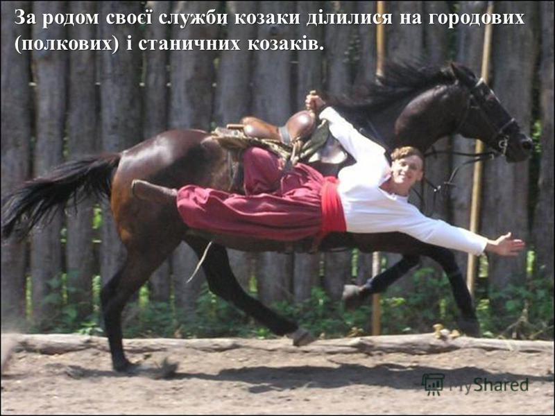 За родом своєї служби козаки ділилися на городових ( полкових ) і станичних козаків.