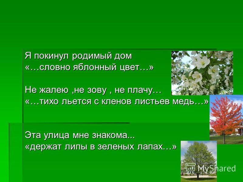 Я покинул родимый дом «…словно яблонный цвет…» Не жалею,не зову, не плачу… «…тихо льется с кленов листьев медь…» Эта улица мне знакома... «держат липы в зеленых лапах…»