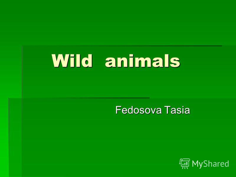 Wild animals Wild animals Fedosova Tasia Fedosova Tasia