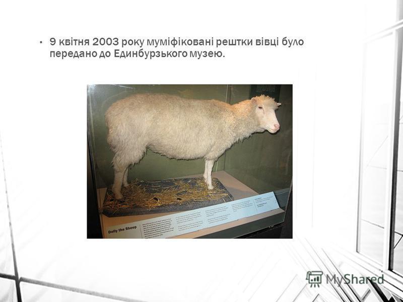 9 квітня 2003 року муміфіковані рештки вівці було передано до Единбурзького музею.