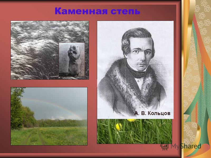 Каменная степь А. В. Кольцов