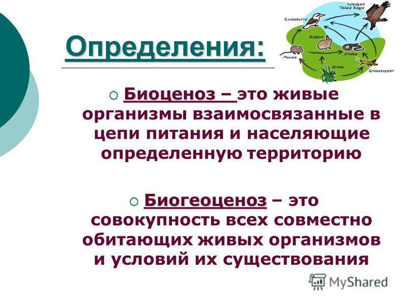Определения: Биоценоз – Биоценоз – это живые организмы взаимосвязанные в цепи питания и населяющие определенную территорию Биогеоценоз Биогеоценоз – это совокупность всех совместно обитающих живых организмов и условий их существования