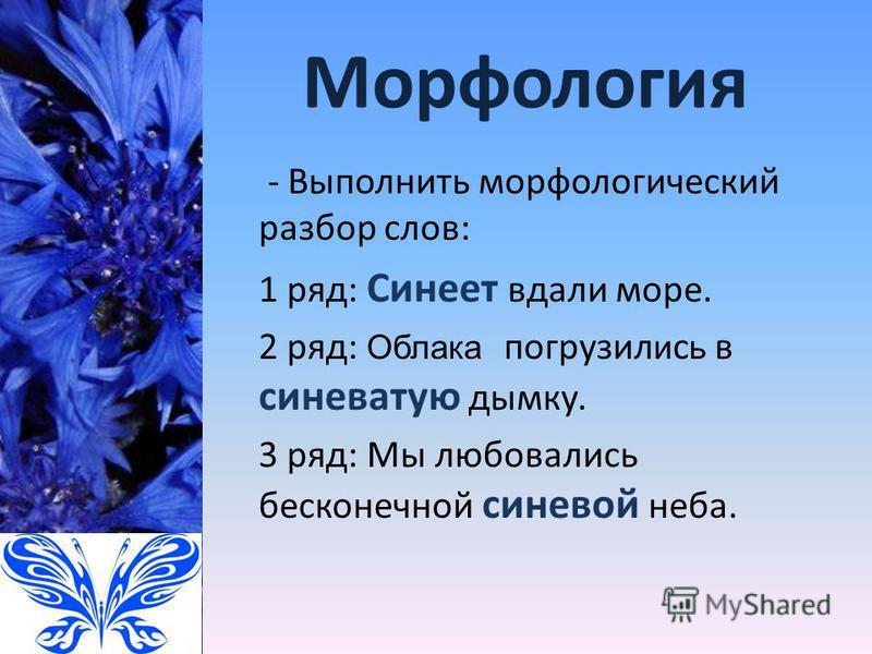 Морфология - Выполнить морфологический разбор слов: 1 ряд: Синеет вдали море. 2 ряд: Облака погрузились в синеватую дымку. 3 ряд: Мы любовались бесконечной синевой неба.