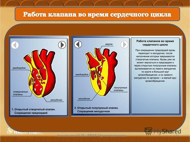 14 Ананьева О.П., МОУ Орневская сош