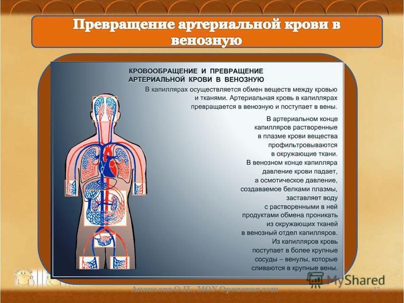 17 Ананьева О.П., МОУ Орневская сош