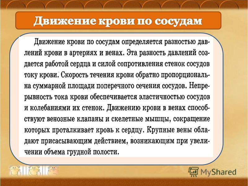 Ананьева О.П., МОУ Орневская сош 30