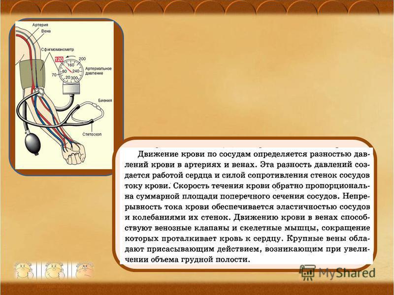 Ананьева О.П., МОУ Орневская сош 31