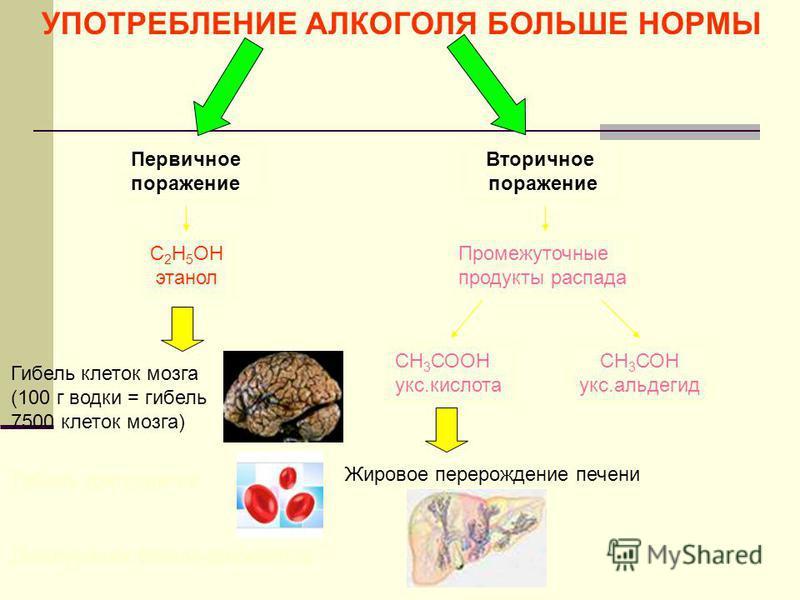 УПОТРЕБЛЕНИЕ АЛКОГОЛЯ БОЛЬШЕ НОРМЫ Первичное поражение Вторичное поражение С 2 Н 5 ОН этанол Промежуточные продукты распада Гибель клеток мозга (100 г водки = гибель 7500 клеток мозга) СН 3 СООН укус.кислота СН 3 СОН укус.альдегид Жировое перерождени