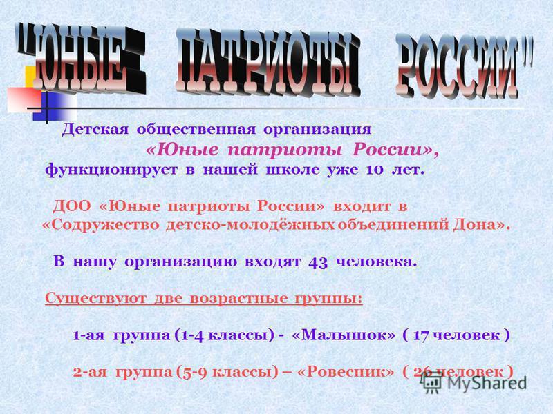 Детская общественная организация «Юные патриоты России», функционирует в нашей школе уже 10 лет. ДОО «Юные патриоты России» входит в «Содружество детско-молодёжных объединений Дона». В нашу организацию входят 43 человека. Существуют две возрастные гр