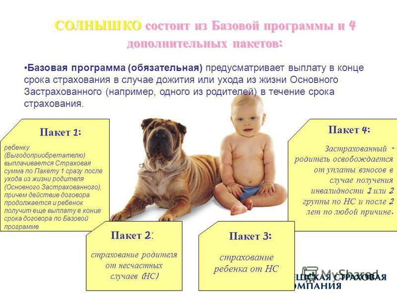 10 СОЛНЫШКО состоит из Базовой программы и 4 дополнительных пакетов : Базовая программа (обязательная) предусматривает выплату в конце срока страхования в случае дожития или ухода из жизни Основного Застрахованного (например, одного из родителей) в т