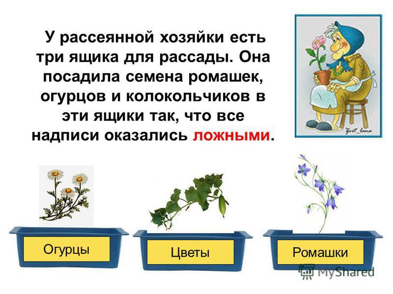 У рассеянной хозяйки есть три ящика для рассады. Она посадила семена ромашек, огурцов и колокольчиков в эти ящики так, что все надписи оказались ложными. Огурцы Цветы Ромашки ?