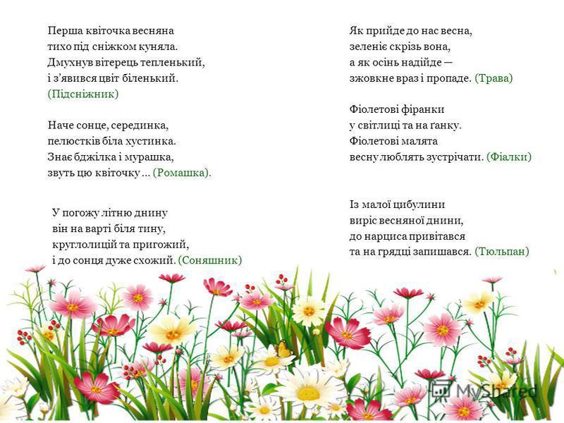 Перша квіточка весняна тихо під сніжком куняла. Дмухнув вітерець тепленький, і зявився цвіт біленький. (Підсніжник) Наче сонце, серединка, пелюстків біла хустинка. Знає бджілка і мурашка, звуть цю квіточку … (Ромашка). Як прийде до нас весна, зеленіє