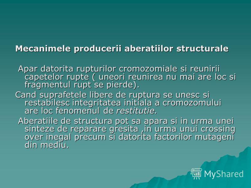 Mecanimele producerii aberatiilor structurale Apar datorita rupturilor cromozomiale si reunirii capetelor rupte ( uneori reunirea nu mai are loc si fragmentul rupt se pierde). Apar datorita rupturilor cromozomiale si reunirii capetelor rupte ( uneori