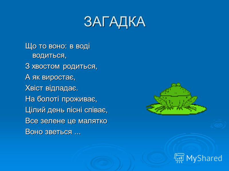 ЗАГАДКА Що то воно: в воді водиться, З хвостом родиться, А як виростає, Хвіст відпадає. На болоті проживає, Цілий день пісні співає, Все зелене це малятко Воно зветься...