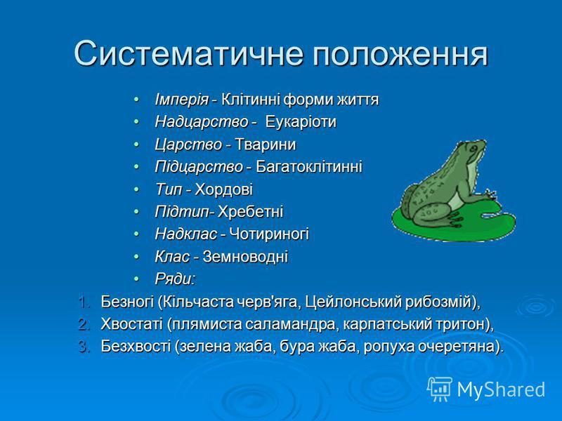Систематичне положення Імперія - Клітинні форми життяІмперія - Клітинні форми життя Надцарство - ЕукаріотиНадцарство - Еукаріоти Царство - ТвариниЦарство - Тварини Підцарство - БагатоклітинніПідцарство - Багатоклітинні Тип - ХордовіТип - Хордові Підт