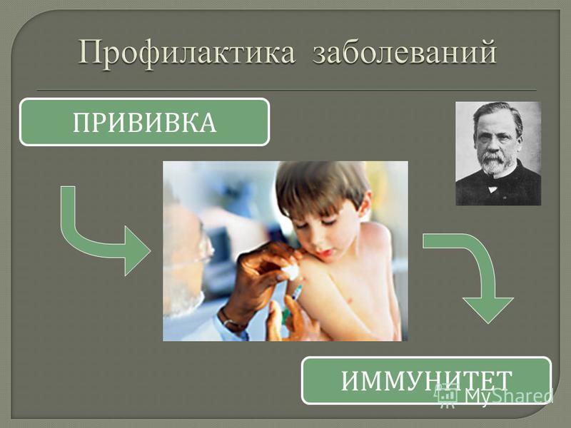 ПРИВИВКА ИММУНИТЕТ