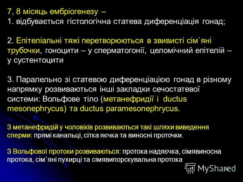 55 7, 8 місяць ембріогенезу – 1. відбувається гістологічна статева диференціація гонад; 2. Епітеліальні тяжі перетворюються в звивисті сім`яні трубочки, гоноцити – у сперматогонії, целомічний епітелій – у сустентоцити 3. Паралельно зі статевою дифере