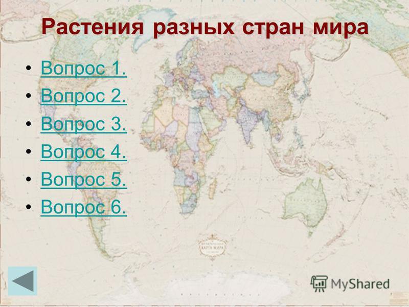 Растения разных стран мира Вопрос 1. Вопрос 2. Вопрос 3. Вопрос 4. Вопрос 5. Вопрос 6.