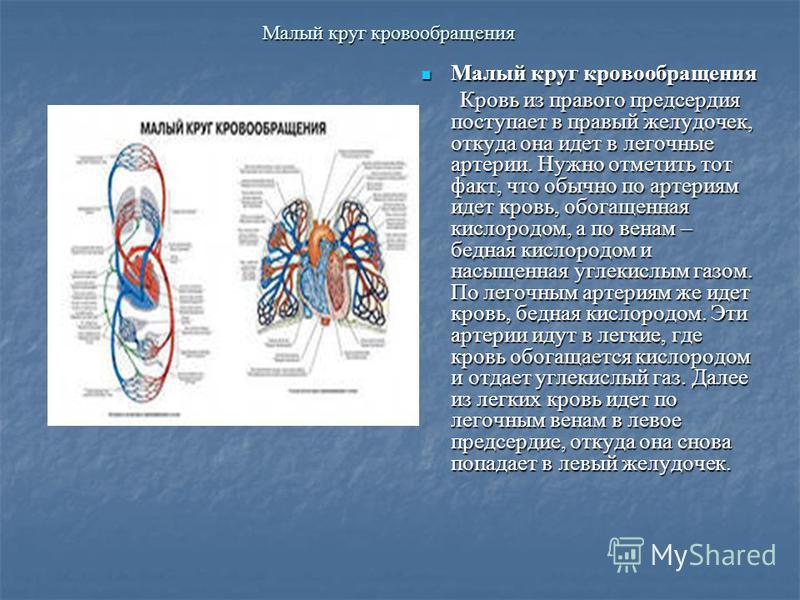 Малый круг кровообращения Малый круг кровообращения Малый круг кровообращения Кровь из правого предсердия поступает в правый желудочек, откуда она идет в легочные артерии. Нужно отметить тот факт, что обычно по артериям идет кровь, обогащенная кислор