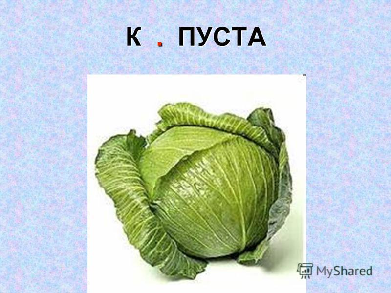 К. ПУСТА