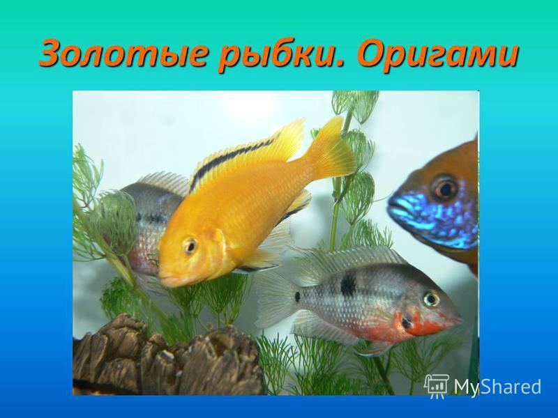 Золотые рыбки. Оригами