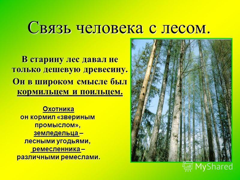 Связь человека с лесом. В старину лес давал не только дешевую древесину. Он в широком смысле был кормильцем и поильцем. Охотника Охотника он кормил «звериным промыслом», земледельца – земледельца – лесными угодьями, ремесленника – ремесленника – разл