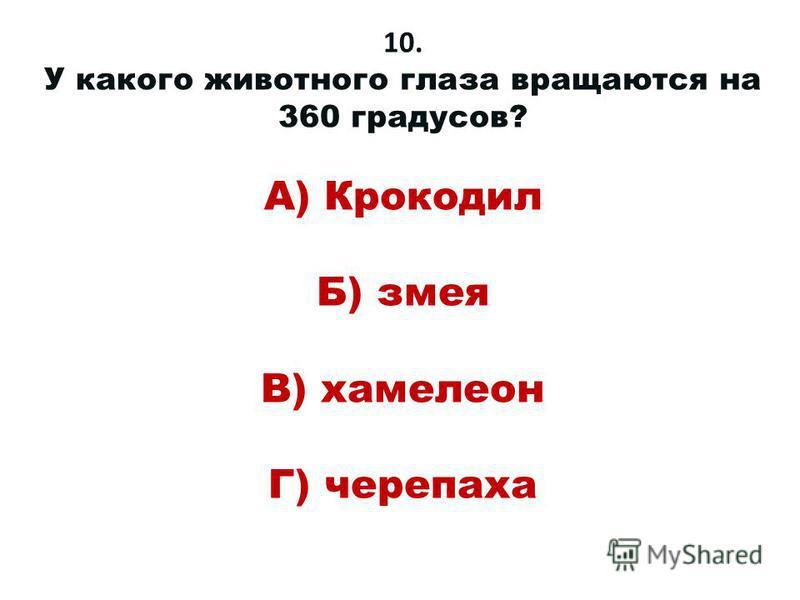 10. У какого животного глаза вращаются на 360 градусов? А) Крокодил Б) змея В) хамелеон Г) черепаха