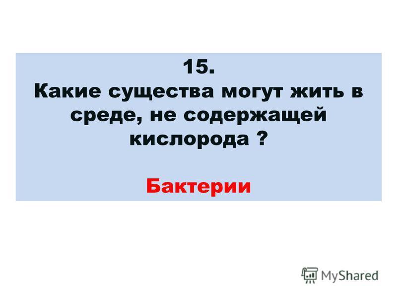 15. Какие существа могут жить в среде, не содержащей кислорода ? Бактерии